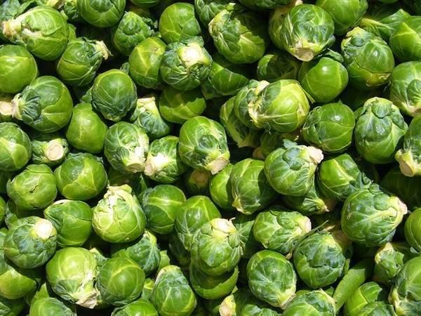 8 loại rau củ quả bạn nên ăn trong mùa thu đông 5