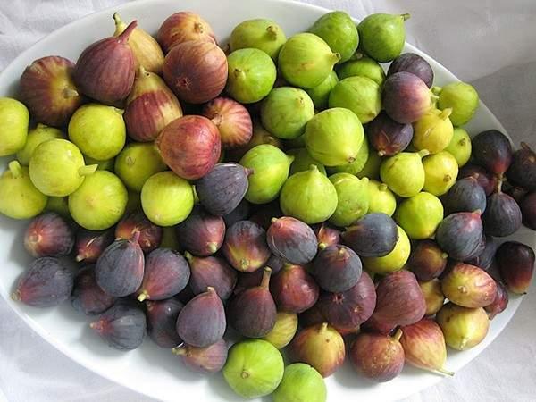 8 loại rau củ quả bạn nên ăn trong mùa thu đông 6