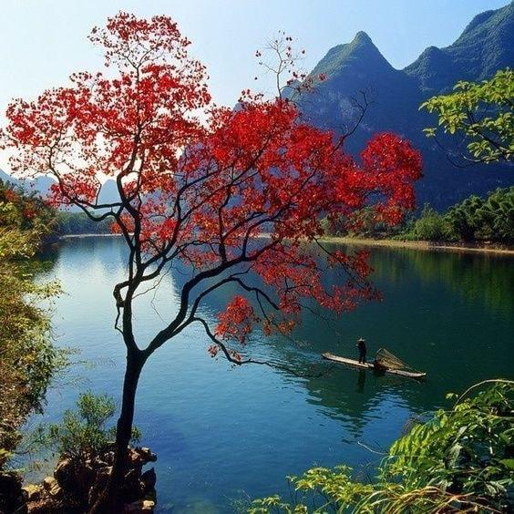 du lịch, Trung Quốc, mùa thu, cua so tinh yeu