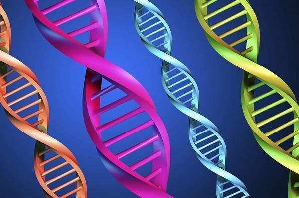 nhiễm sắc thể, di truyền, xét nghiệm, sẩy thai, dịch ối, dị tật, bẩm sinh, nhiễm sắc thể đồ,