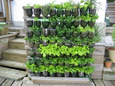 5 ý tưởng tái chế chai nhựa, giúp môi trường thêm xanh.