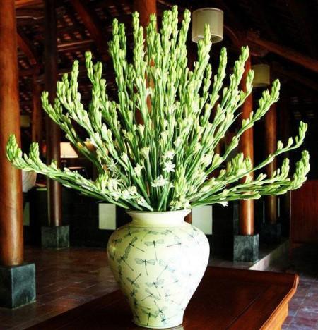 Mùng 1 tháng 5 âm lịch: Dâng cúng hoa gì để cầu được ước thấy