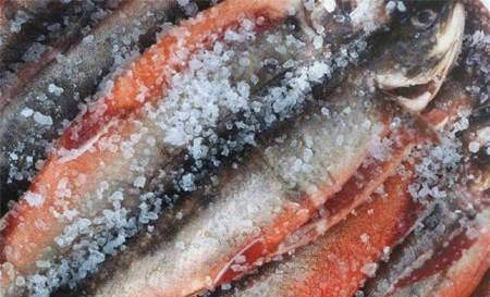 Những sai lầm khi ăn cá có thể khiến cơ thể bạn phải 'trả giá đắt'