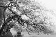 Mùa đông mùa của những nỗi nhớ
