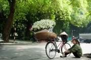 Ngoài sự yêu thích màu trắng tinh khôi của loại hoa này, Quyên còn muốn kiếm tiền để trang trải học phí.