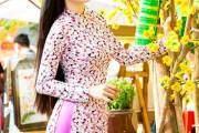 Nữ diễn viên Lê Phương