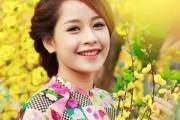 Chi Pu sáng bừng sắc xuân thì bên hoa mai