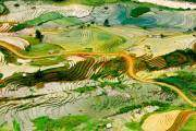 Mùa nước đổ và lúa chín (tháng 8-10) là hai thời điểm đẹp