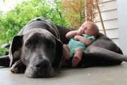Em bé này là của tôi đấy chứ!