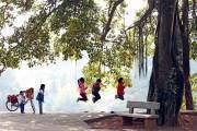 Học sinh tiểu học tại huyện Thạch Thất chiều chiều thường chơi nhảy dây.