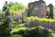 Vườn Giardino di Ninfa mang nét hoài cổ, u buồn ở Italy