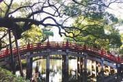 Một khu vườn ở thành phố Fukuoka mang nhiều nét đẹp truyền thống Nhật Bản với cây cầu cong đặc trưng.