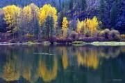 Nhiều người có cảm giác mùa thu là mùa xuân thứ hai ở bang Washington khi mà mỗi chiếc lá cây cũng đẹp như những bông hoa vậy.