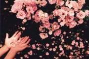 Tình yêu gặp trắc trở, Gia đình ngăn cấm, Không hợp tuổi, Đau khổ khi tình yêu bị chia cắt, thuyết phục gia đình, Tổng đài Tư vấn Ánh Dương, 19006802, 19006801, Tư vấn Tâm lý, Tư vấn tình yêu, Tư vấn Hạnh phúc gia đình, Tư vấn Giới tính, Tư vấn Sức khỏe,