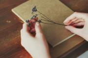 Tình yêu, Cô đơn, Rời xa, Mở lòng, Lỡ duyên, cua so tinh yeu
