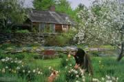 ngôi nhà, mơ ước, cuộc sống, hạnh phúc, cua so tinh yeu