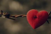 nội tộc, kết hôn, cấm đoán, luật hôn nhân, không được kết hôn