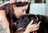 chú chó ,    cảm động  ,   tình bạn ,    hôn lễ   ,  charlie bear