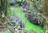 suối lạ, nước chuyển màu xanh, đặc biệt, thiên nhiên