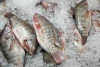 cá đông lạnh, mẹo phân biệt, sức khỏe, trữ đông