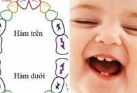 mọc răng, bé mọc răng, răng sữa , hàm răng, bé mọc răng sữa, cửa sổ tình yêu