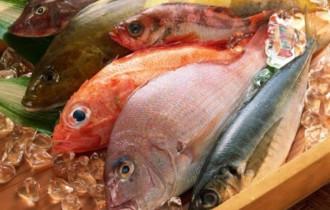 cá tươi, phân biệt cá tươi và cá ươn, cách chọn cá tươi, cua so tinh yeu