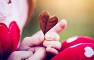 tình yêu, con một, con út, ở rể, làm dâu, bố mẹ, giá cả, khoảng cách, tài sản thừa kế, ảnh hưởng, tiết kiệm, anh chị, thiện cảm, tôn trọng