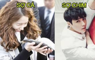 sao Hàn, nỗi sợ, thần tượng Hàn Quốc, nỗi sợ của idol Kpop, cua so tinh yeu