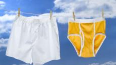 """Vì sao nam giới nên mặc quần đùi thay vì quần """"tam giác"""""""