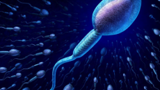 vô sinh nam, tinh trùng yếu, tinh dịch đồ, nguyên nhân