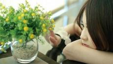 hạnh phúc, tình cảm, quan tâm, nhàm chán, vừa đủ, lạnh nhạt, cửa sổ tình yêu.