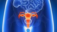 vô sinh hiếm muộn, điều trị,thăm khám,chụp hsg, chụp tử cung vòi trứng