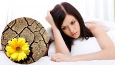 Khô vùng kín, thói quen thụt rửa, suy giảm nồng độ hormon sinh dục nữ, thói quen sinh hoạt, thức khuya, căng thẳng, chất béo, cuasotinhyeu