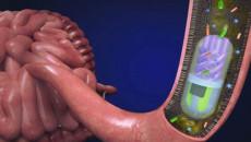 Bệnh đường ruột có ảnh hưởng tới tác dụng của thuốc tránh thai không?