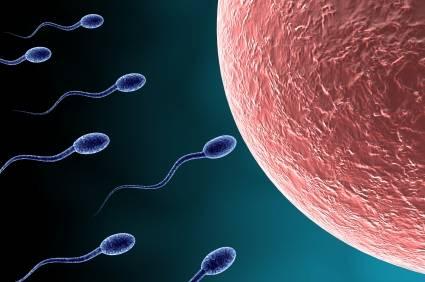 Cùng tìm hiểu về nguyên nhân bị thiểu năng tinh trùng