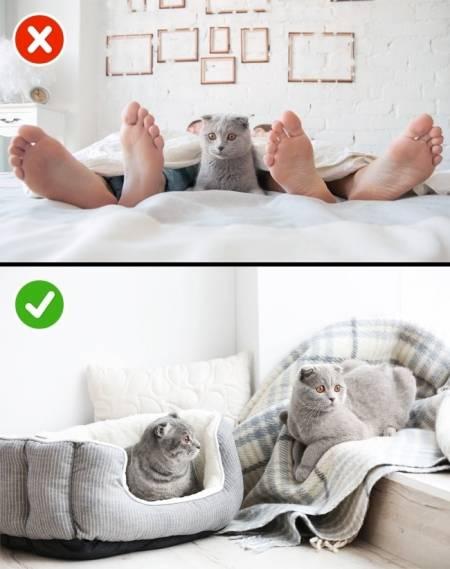 cặp đôi hạnh phúc, điều cặp đôi hạnh phúc làm trước khi ngủ, quy tắc hạnh phúc, cua so tinh yeu