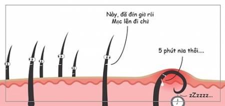 cách tẩy lông hiệu quả, cách tẩy lông nách tốt nhất, tẩy lông vùng nách, cua so tinh yeu