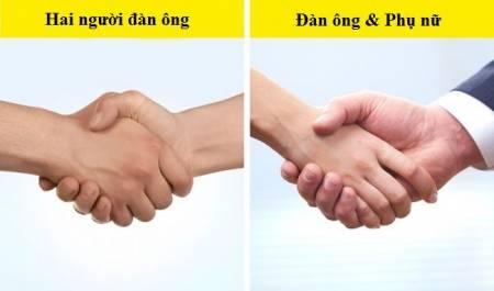 Sự khác biệt giữa đàn ông và phụ nữ, Phụ nữ và đàn ông, Sức hút của phái nữ, đối lập giữa đàn ông và phụ nữ, cua so tinh yeu