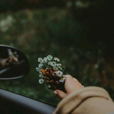 Tình yêu, kết thúc, chia tay, lỗi lầm, cửa sổ tình yêu.