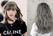 Màu nhuộm hợp Thu/Đông, Tóc đẹp, Nhuộm tóc, Giáng sinh, Tết nguyên đán, cua so tinh yeu