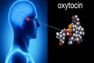 cặp vợ chồng, Oxytocin, Thuốc chống trầm cảm, đời sống chăn gối, người bạn đời giảm căng thẳng