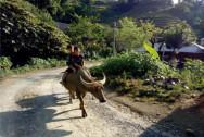 Sin Suối Hồ, du lịch Lai Châu, người Dao ăn cơm mới