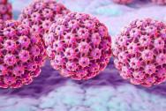 Các Type HPV và nguy cơ gây ung thư cổ tử cung