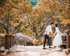 Tú Anh, Đỗ Mỹ Linh, đặng thu thảo, Mai Phương Thuý, đám cưới tú anh, cua so tinh yeu