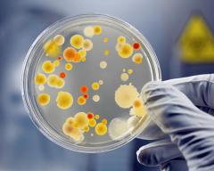 Nuôi cấy phân lập định danh vi khuẩn là xét nghiệm gì