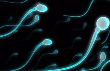 tinh trùng yếu, xét nghiệm tinh trùng, khó thụ thai tự nhiên