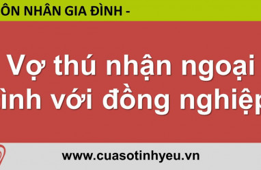 Vợ thú nhận ngoại tình với đồng nghiệp - CGTL Đinh Đoàn