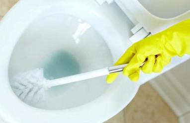Nước tẩy rửa bồn cầu có gây hại tới thai nhi trong bụng không?