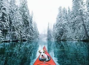 cuộc sống  ,   bình yên ,    thiên nhiên