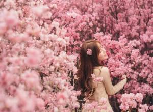 du lịch Hàn Quốc , hoa đào,  hoa đỗ quyên, cua so tinh yeu, cuasotinhyeu, 17/04/2017